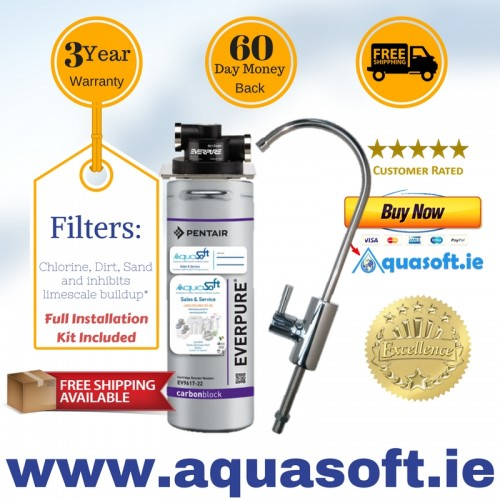 Everpure® 2CB5-S Water Filter System|FLR-03 Tap