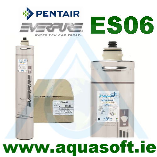 Pentair® Everpure ES06 filter | EV9607-10