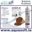 Pentair® Everpure 4CB5-S filter | EV9617-21